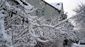 winter in germany 3